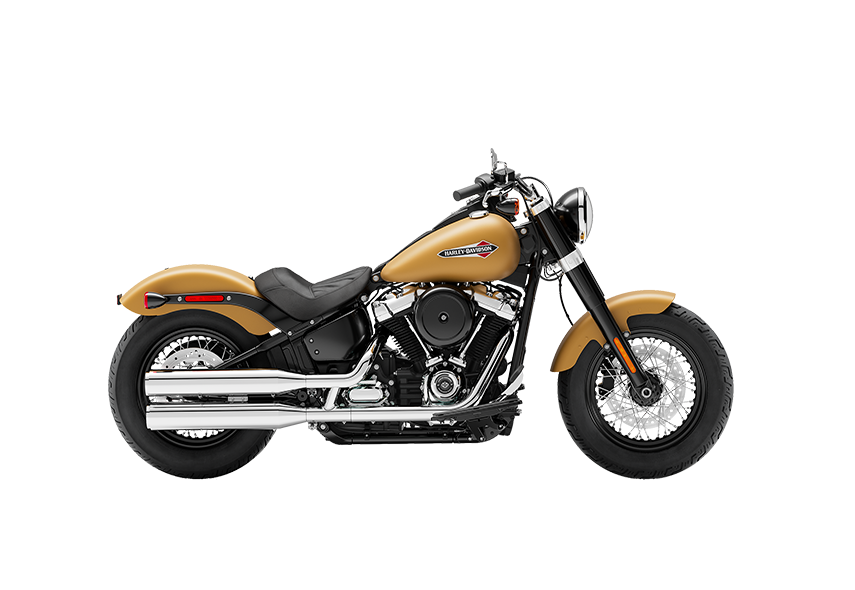 https://di-uploads-development.dealerinspire.com/avalancheharleydavidson/uploads/2018/08/19_FLSL__0000_Rugged-Gold-Denim.png
