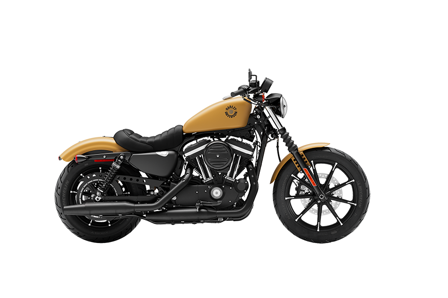 https://di-uploads-development.dealerinspire.com/avalancheharleydavidson/uploads/2018/08/19_XL883N__0001_Rugged-Gold-Denim.png