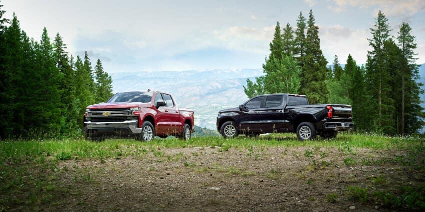 2020 Chevrolet Silverado 1500 trucks parked in the grass