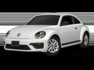 Beetle White 2018