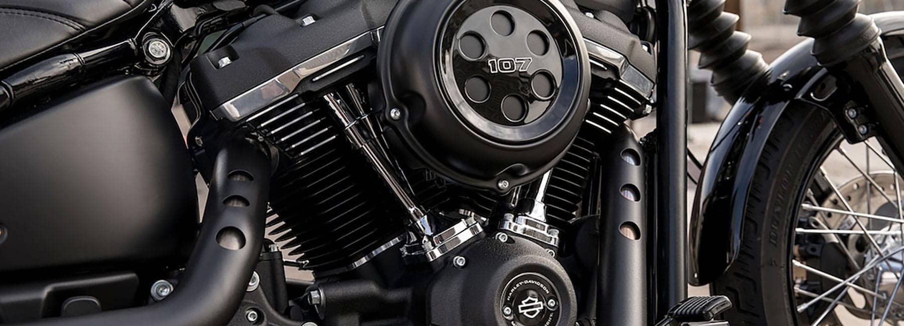 2019 Harley-Davidson Softail Engine