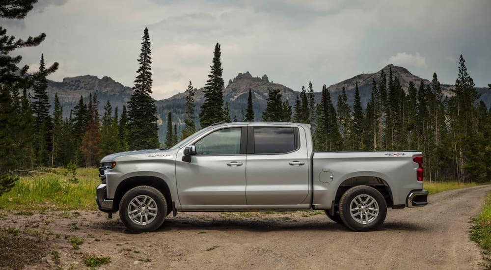 One of the many popular Chevy Trucks, a silver 2020 Silverado 1500 LT is parked in the wilderness in front of trees and mountains.
