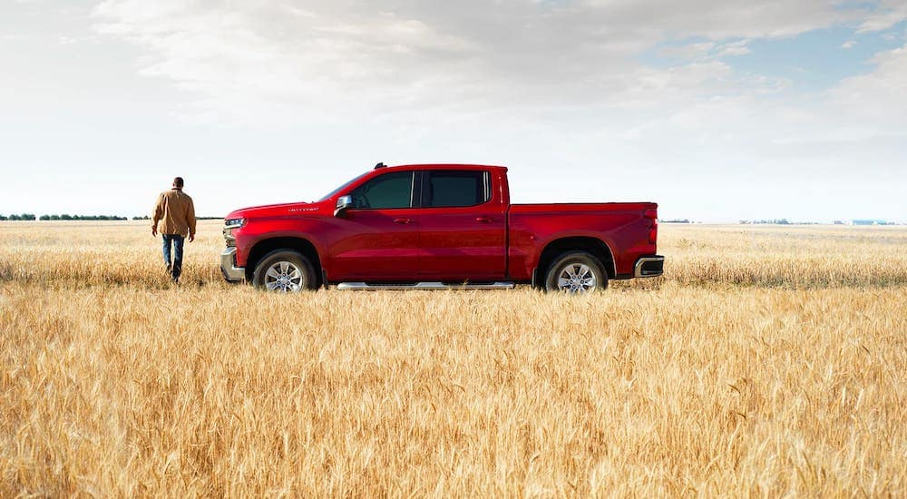 Popular among chevy trucks, a red 2020 Chevy Silverado 1500 LT is parked in an Indianapolis wheat field.