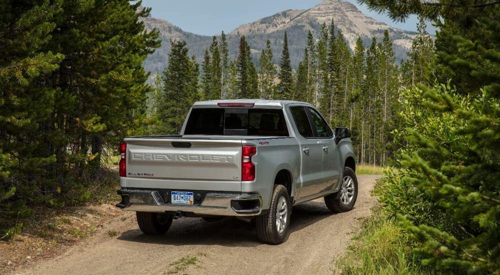 A silver 2020 Chevy Silverado 1500 LT is facing away on a woodland trail overlooking mountains.