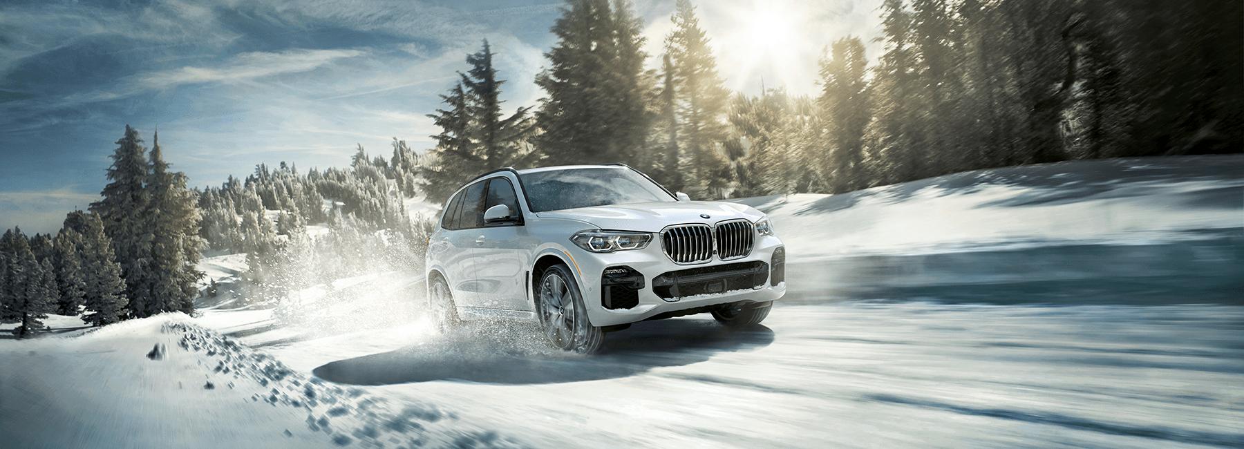 2019 BMW_X5_Snow