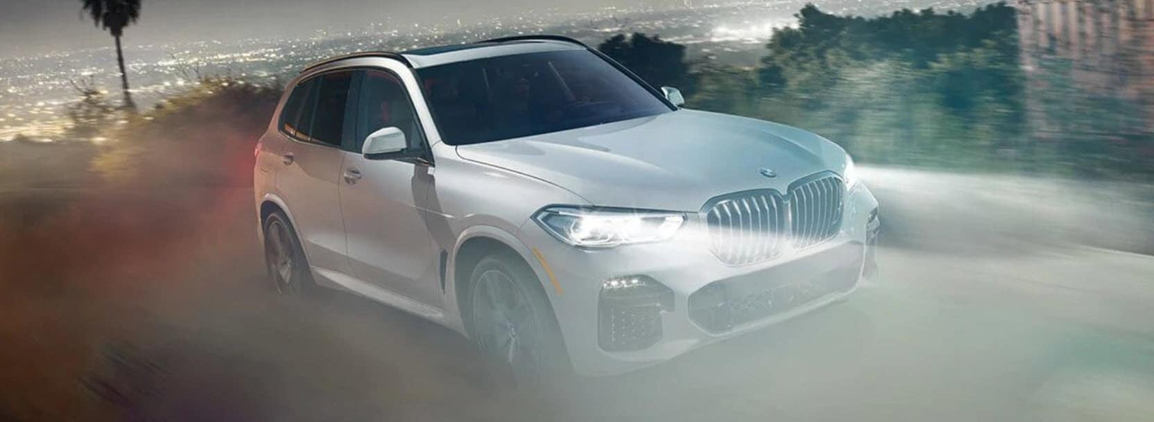 2019 BMW X5 for Sale