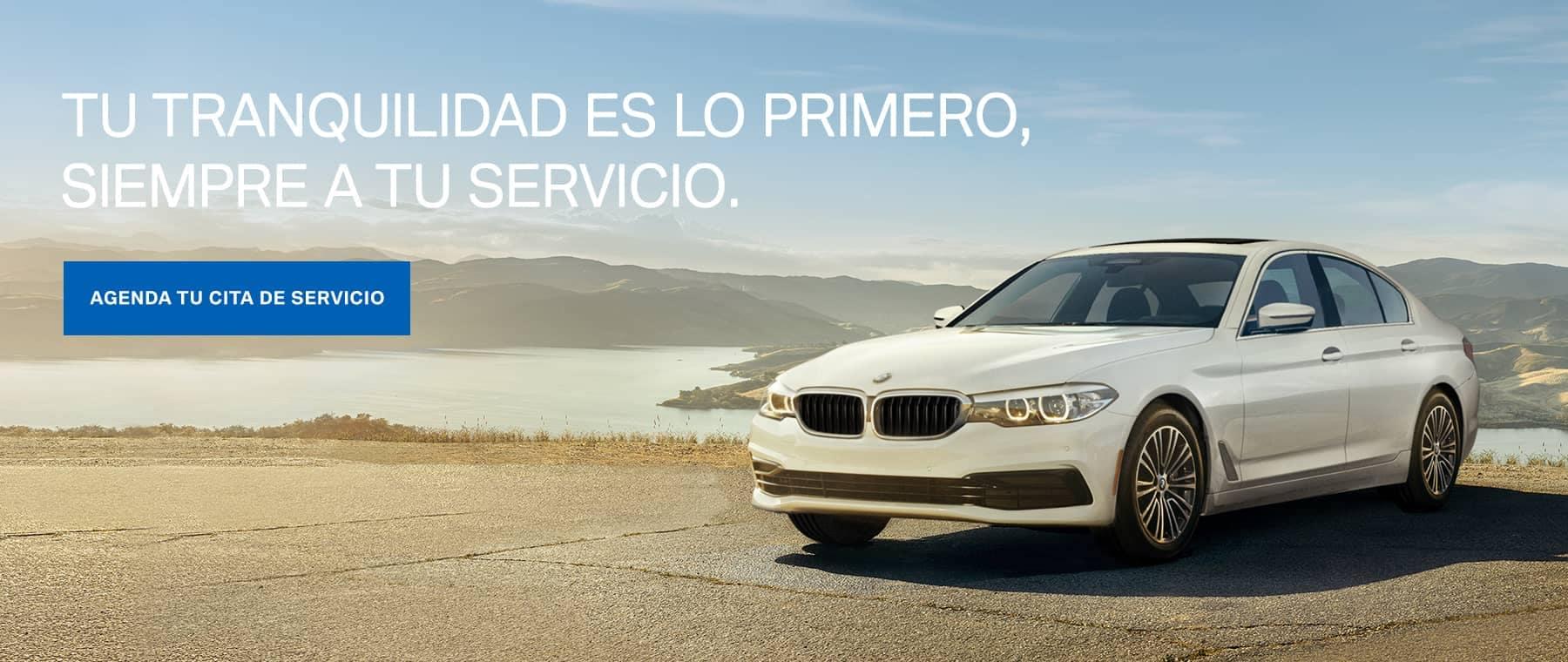 Service Banner Spanish