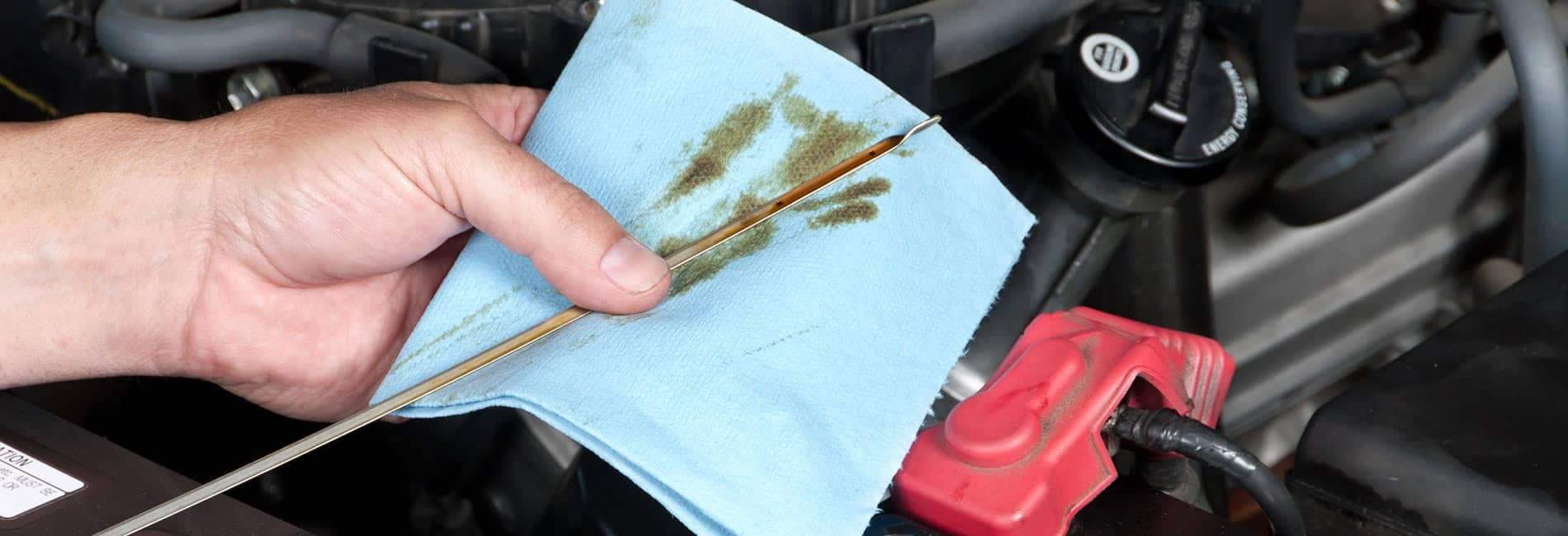 Oil picture of dipstick getting wiped onto blue papertowel