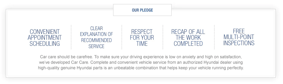 Hyundai Pledge