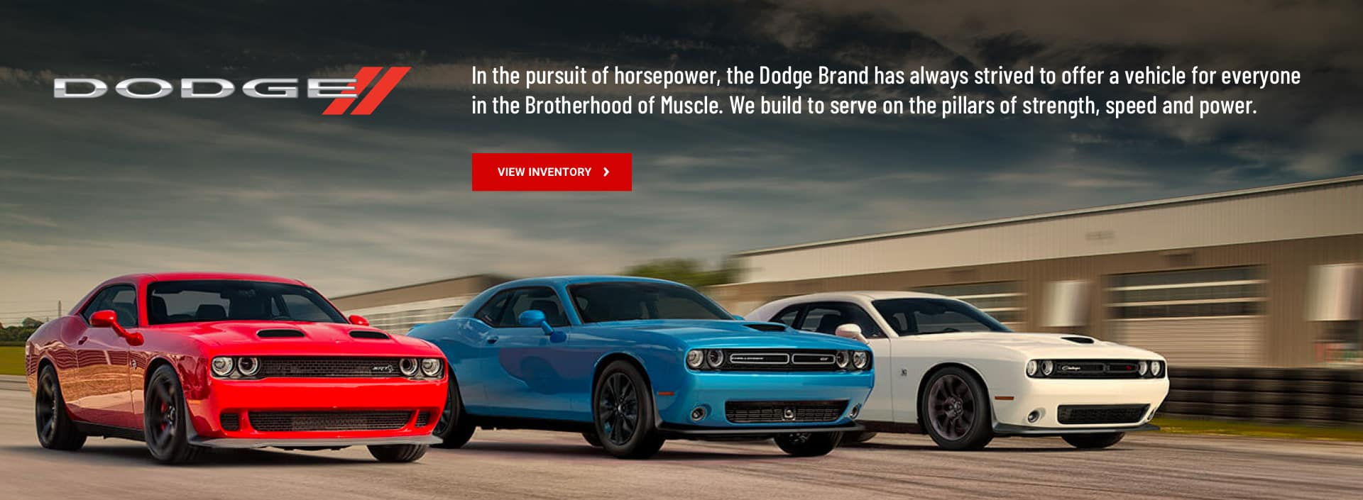 Dodge Chargers racing