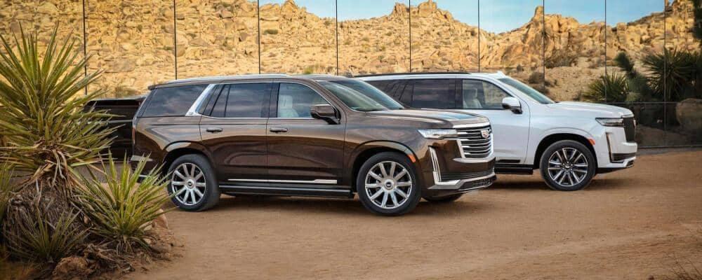 2021 Cadillac Escalades in the desert