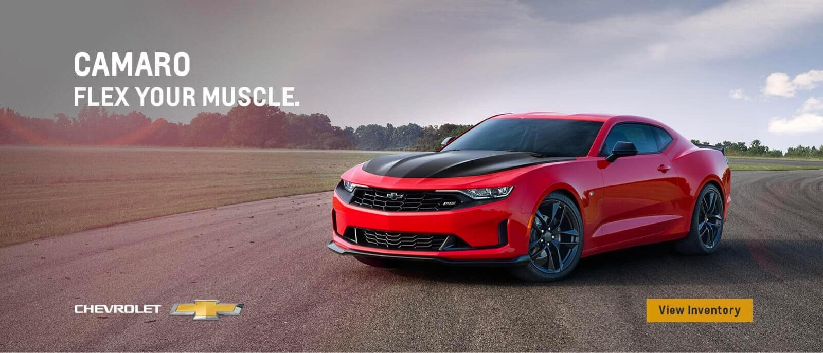 Flex Your Muscles - Red Camaro Banner