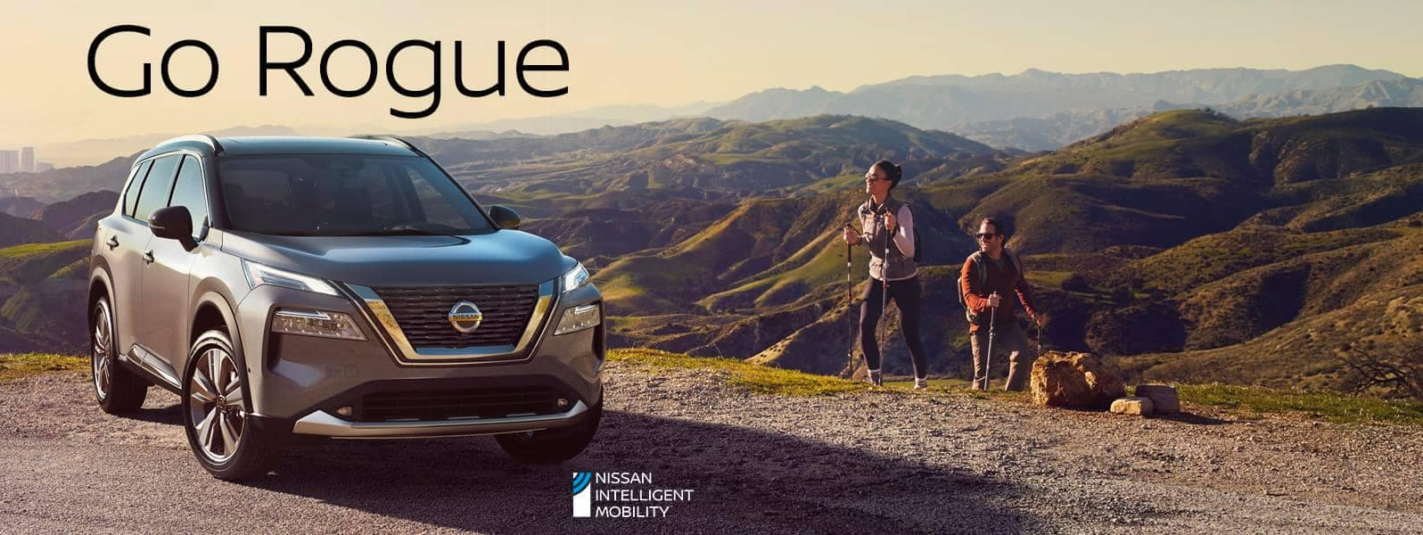All-New 2021 Nissan Rogue Parked on a Hiilltop