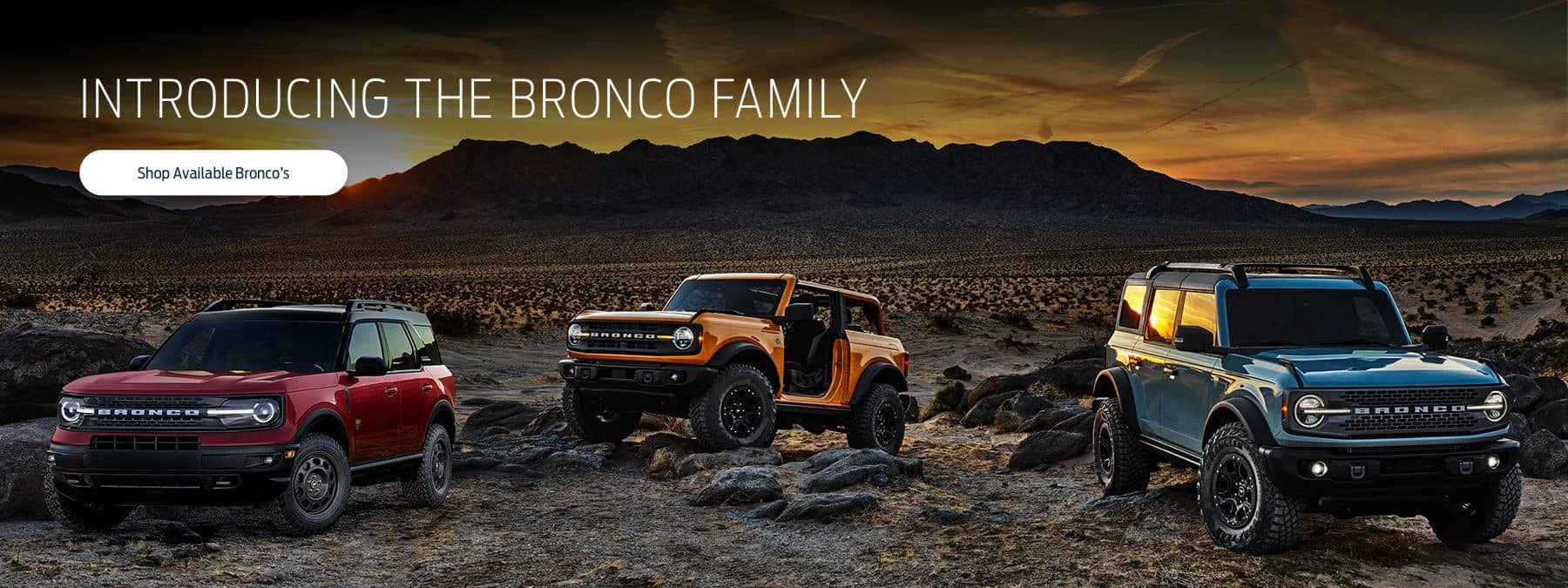 Introducing the Bronco Family