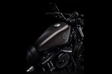 https://di-uploads-development.dealerinspire.com/dibrandhubharleydavidson/uploads/2021/01/2021-Iron883-Features-03.jpg