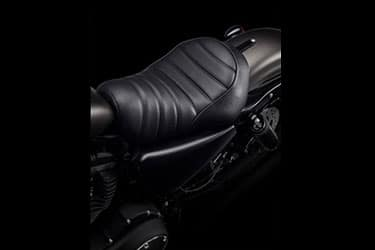 https://di-uploads-development.dealerinspire.com/dibrandhubharleydavidson/uploads/2021/01/2021-Iron883-Features-05.jpg