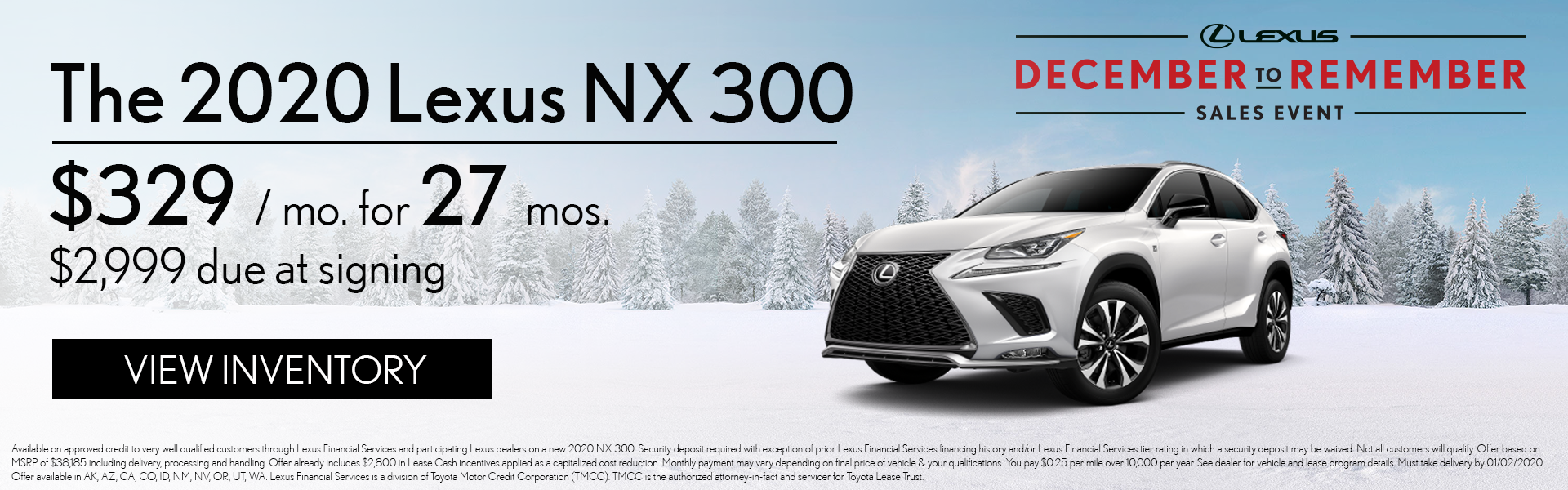 NX 300 2020