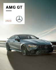 AMG GT 4DR
