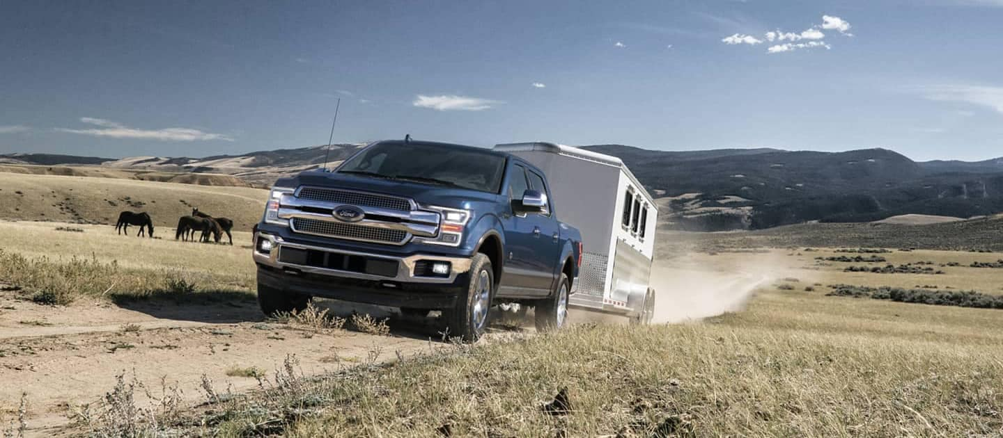Ford F-150 pulling camper with horses in the distance
