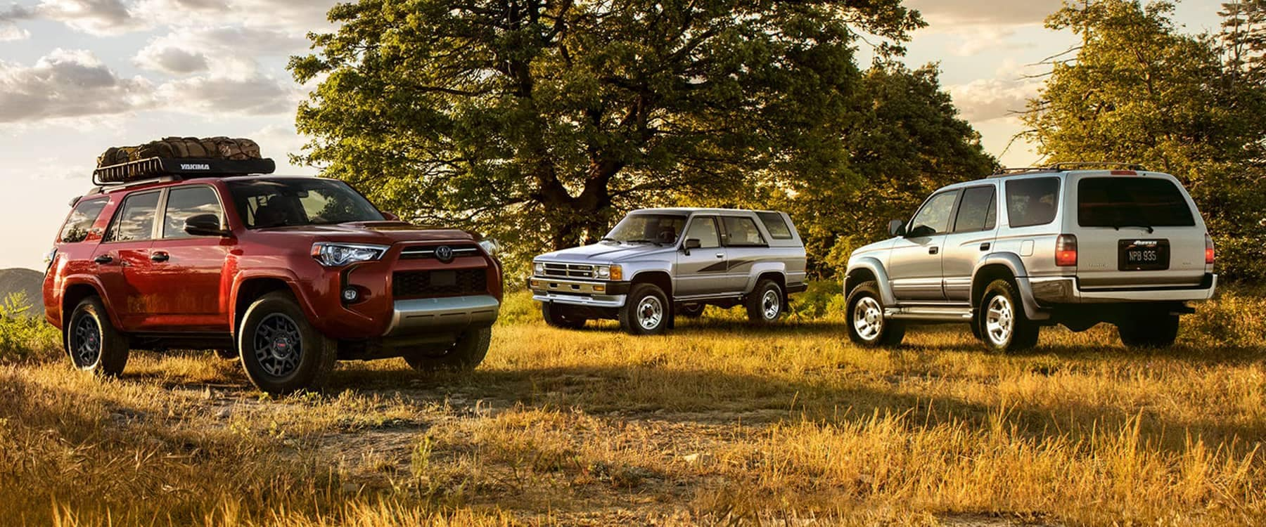 Three 2021 Toyota 4Runners parked in grass next to trees