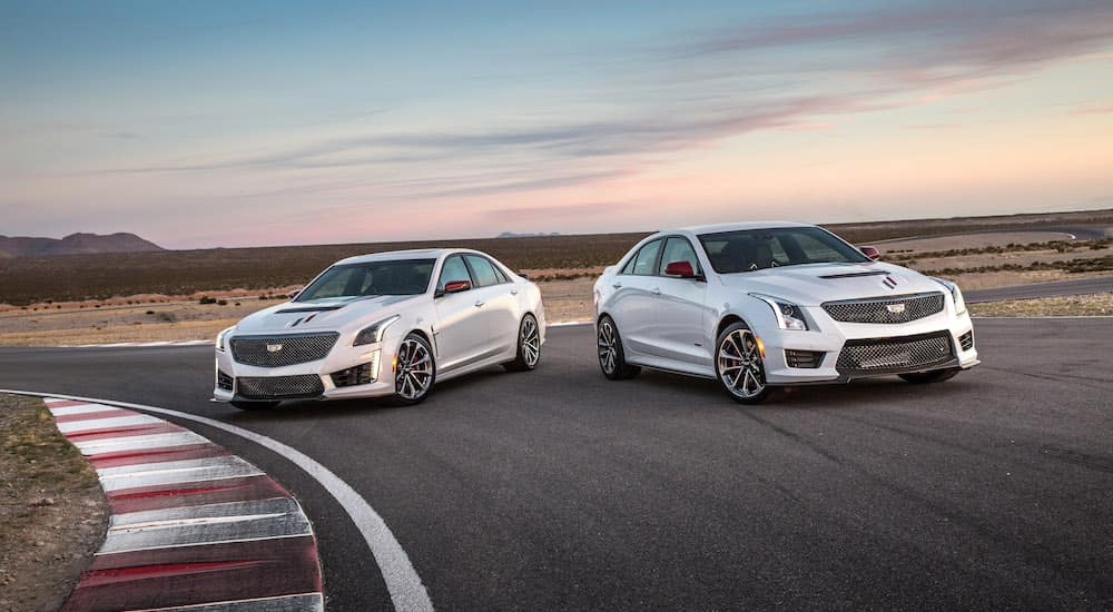2 white v-series Cadillac's on a Texas race track