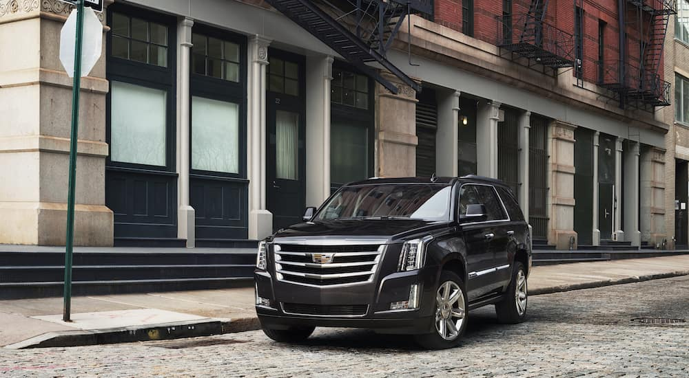 Black 2018 Escalade outside a Fort Worth store front