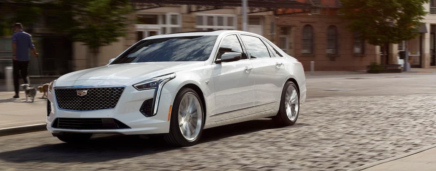 A white 2019 Cadillac CT6 from a Cadillac dealer near Dallas drives over a cobblestone road
