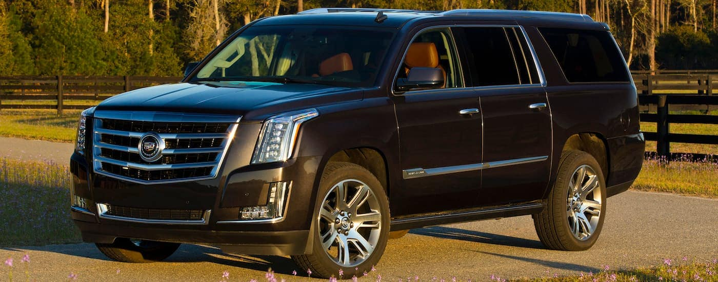 A dark colored 2015 Cadillac Escalade, popular among affordable luxury cars, is parked at a farm near Fort Worth, TX.