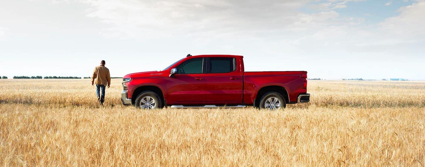 One of the popular Chevy trucks for sale, a red 2020 Chevy Silverado LT is parked in a wheat field near Ennis, TX.