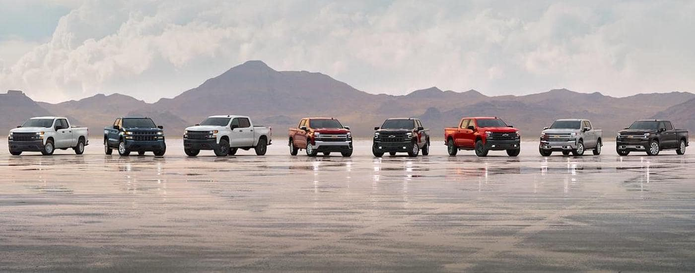 Eight configurations of the 2019 Chevy Silverado 1500 are shown with mountains in the distance.