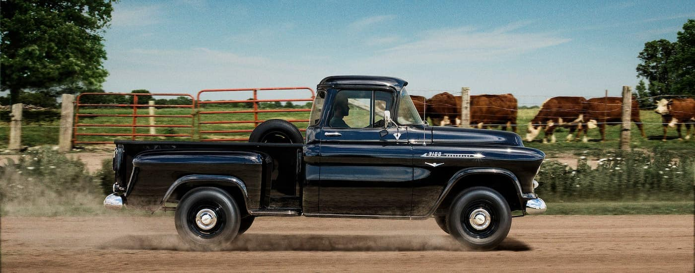 A black 1955 Chevy Task Force pickup, which would be near impossible to find at a Chevy dealership near me today, is driving past a farm.