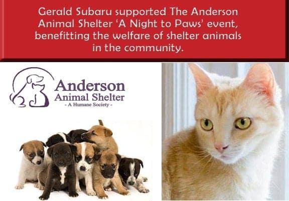Anderson Animal Shelterjpg