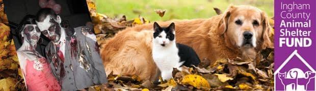 Ingham County Animal Shelter Fund