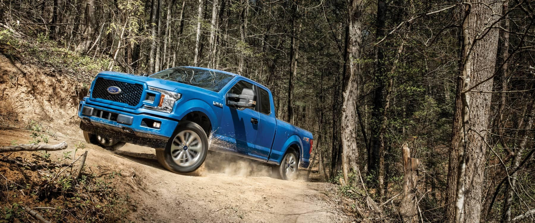 2020 blue ford f-150 in forest