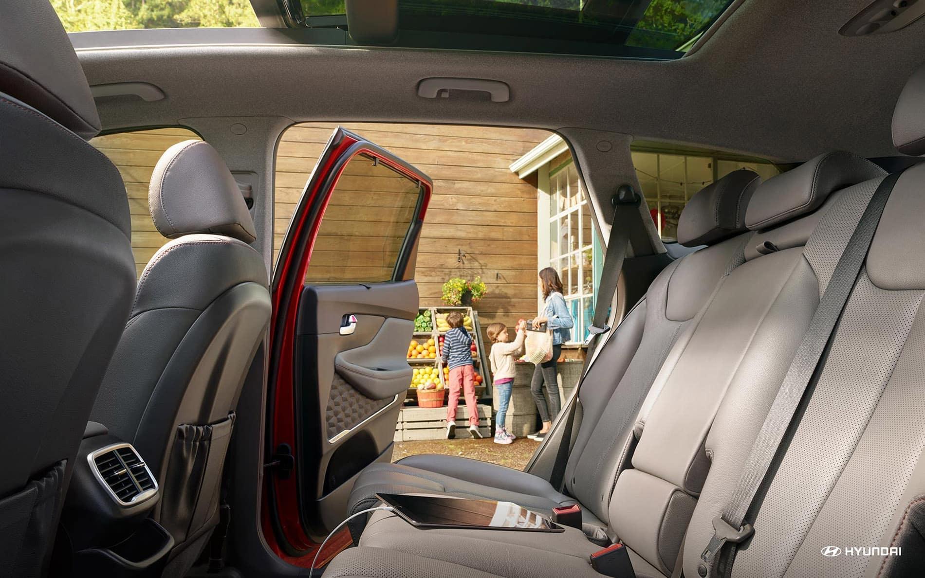 2020 Hyundai Santa Fe back interior