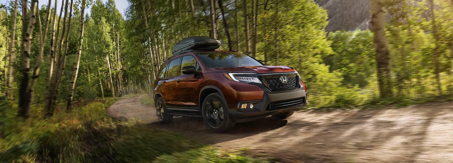 2020 Red Honda Passport Driving in Forest