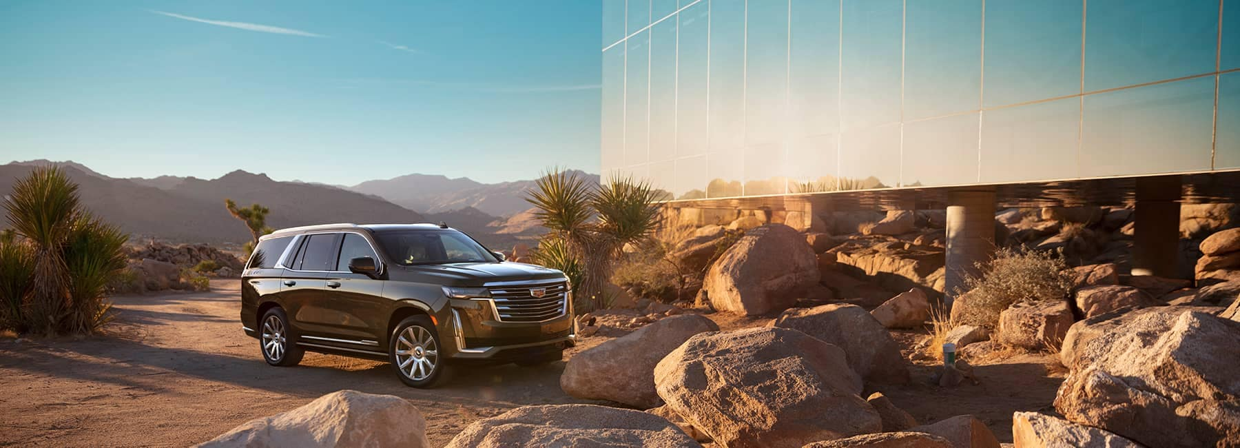 Cadillac in the desert under the sunlight