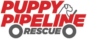 Puppy Pipeline Rescue Logo