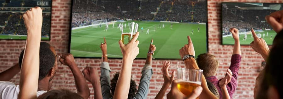 Fans at Sports Bar