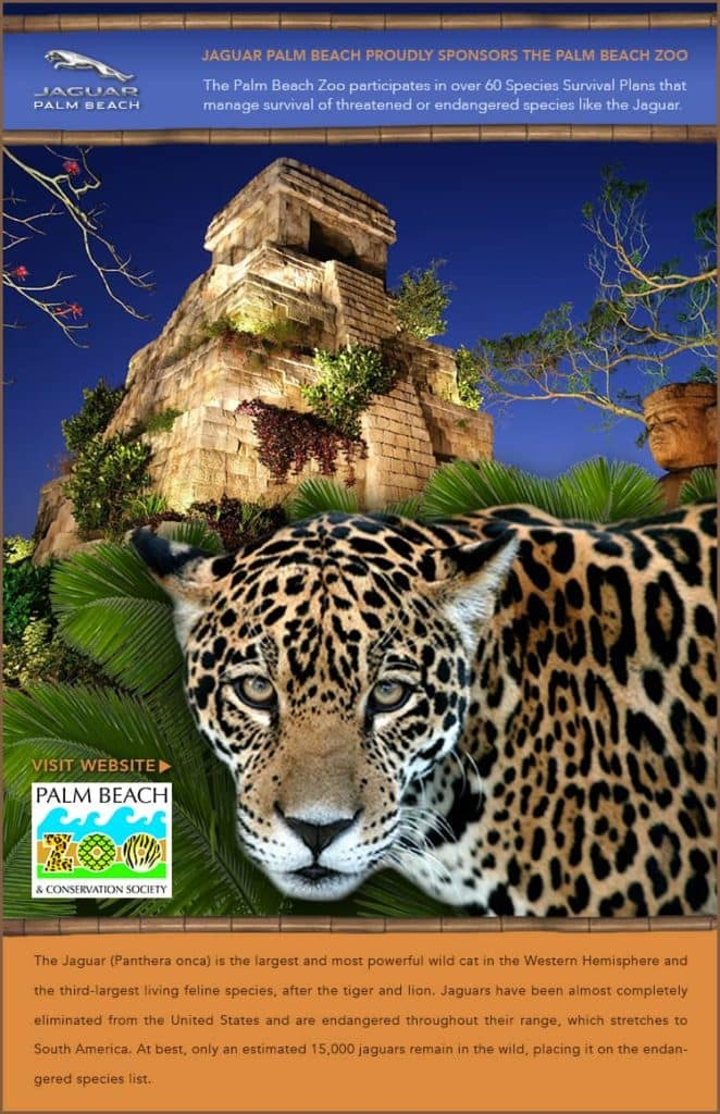 Marvelous Jaguar Palm Beach Is Proud To Sponsor The Palm Beach Zoo! Be Sure To Ask  For Your Jaguar Conservation Critter When You Visit Our Showroom!