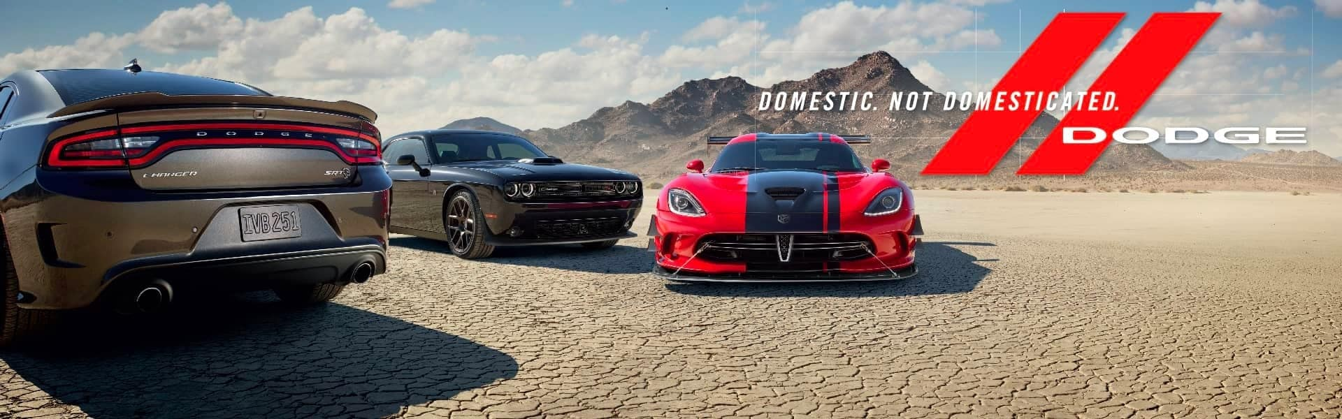 New Dodge Charger and Challenger and Viper in Desert