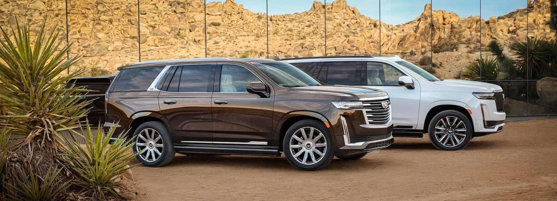 Two 2020 Cadillac Escalades