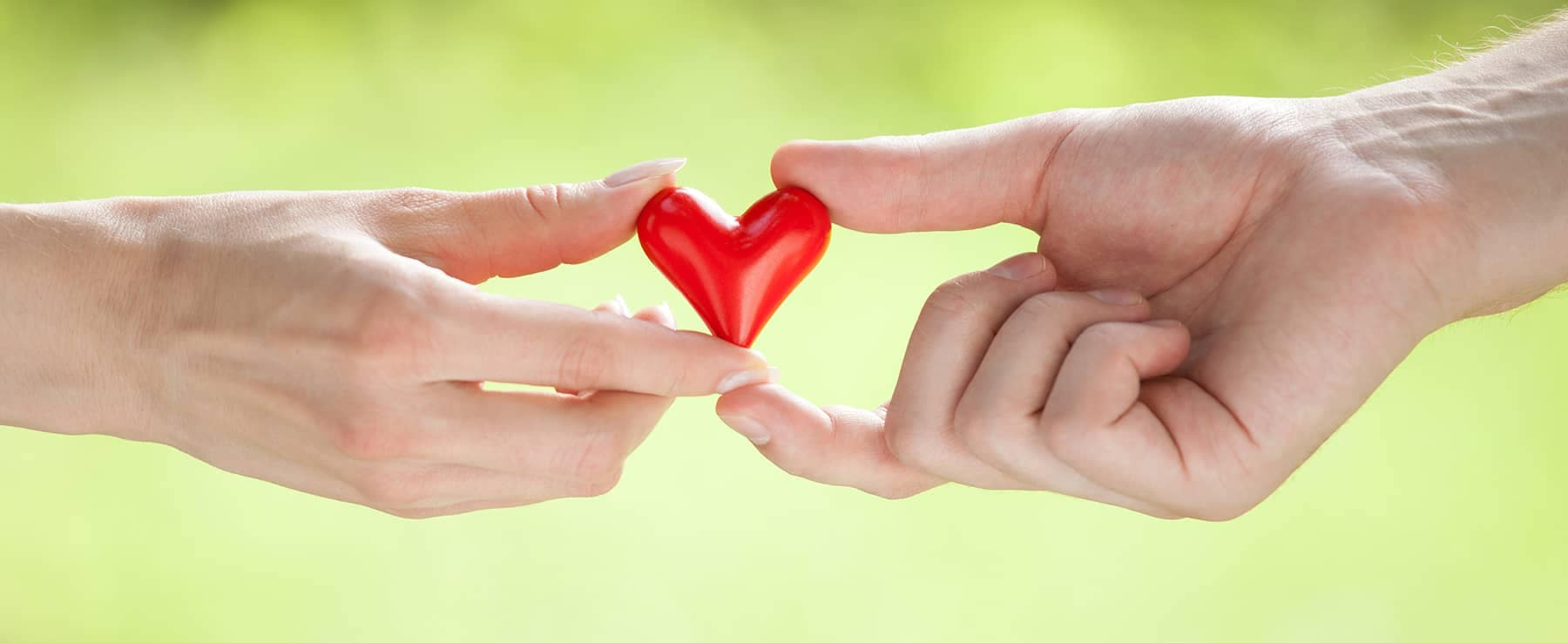 two people's hands holding a small heart
