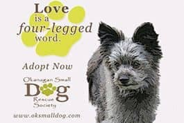 Okanagan Central Small Dog Rescue Society