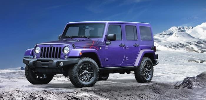2016 Backcountry purple