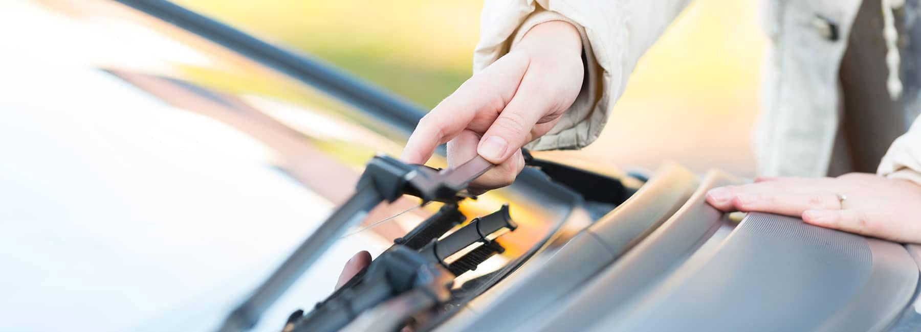 windshield wiper blades-optim