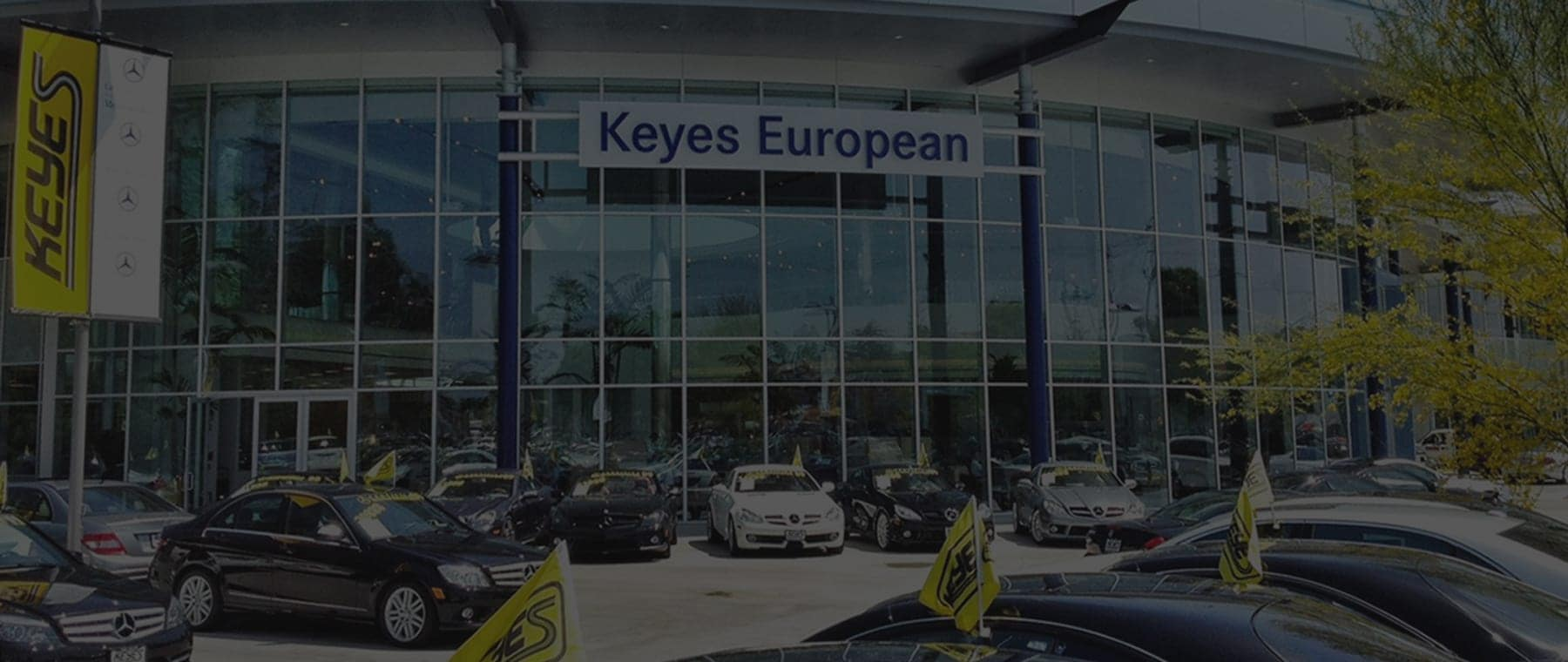Keyes European Mercedes-Benz | New & Used Cars For Sale ...