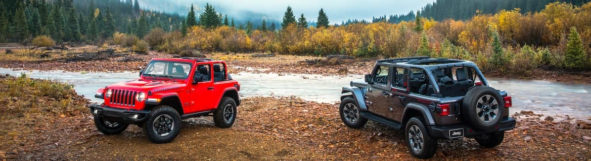 Two Jeeps parked by a creek in a forest