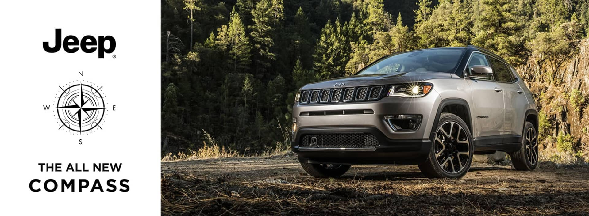 Jeep compass in the forrest