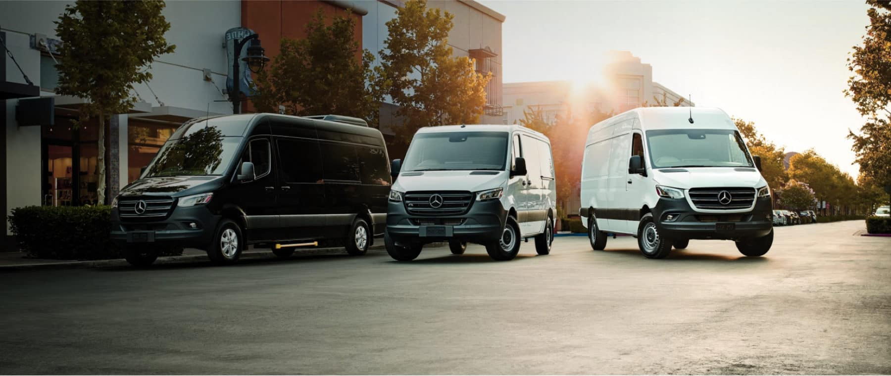 Mercedes Benz Commercial Trucks Lines Up